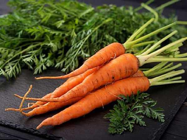 nằm mơ thấy củ cà rốt